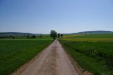 Alentours de Tannay, Nièvre, 23 mai 2010, 10:43