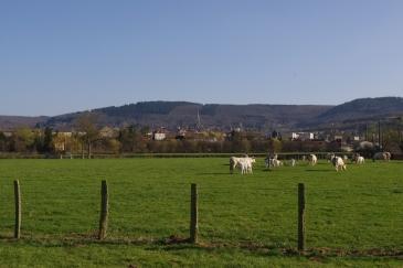 Autun, Saône-et-Loire, 29 mars 2012, 17:46