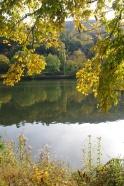 Heidelberg, 20 octobre 2012, 14:57