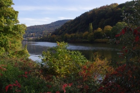Heidelberg, 20 octobre 2012, 15:01