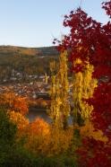Heidelberg, 6 novembre 2012, 16:28