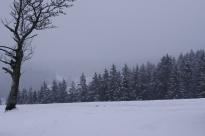 St Märgen, 28 décembre 2012, 11:38