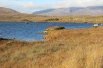 Connemara, County Galway (Irlande), 14 novembre 2014, 12:22