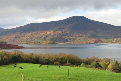 County Kerry, Irlande, 15 novembre 2014, 11:22