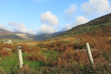 Péninsule de Dingle, County Kerry, 16 novembre 2014, 13:46